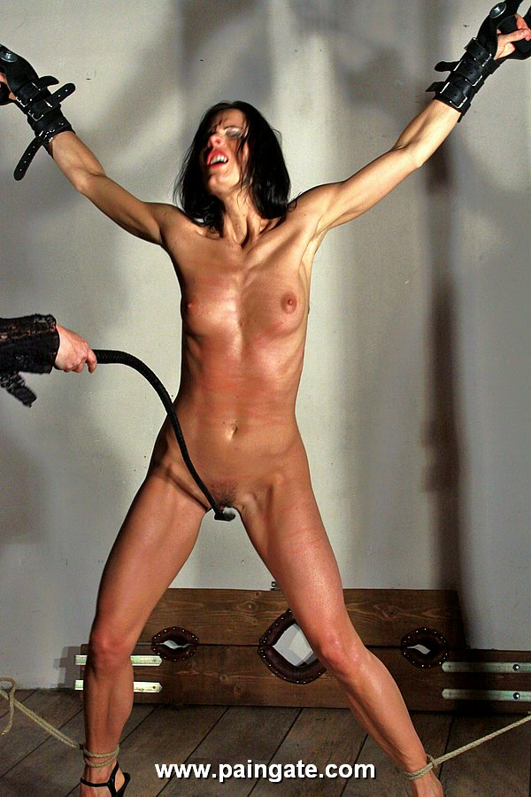 Lynette Pain Gate Whipping Galleries